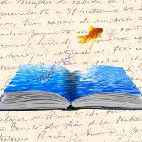 Frases y dichos de peces